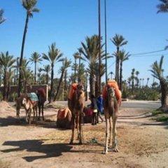 Отель Riad Tahar Oasis Марокко, Марракеш - отзывы, цены и фото номеров - забронировать отель Riad Tahar Oasis онлайн спортивное сооружение