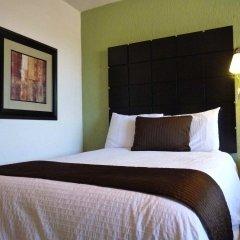 Отель Posada Terranova Мексика, Сан-Хосе-дель-Кабо - отзывы, цены и фото номеров - забронировать отель Posada Terranova онлайн комната для гостей фото 4