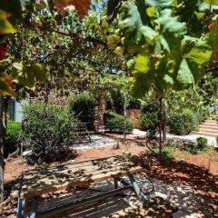 Отель Tur Sinai Organic Farm Resort Иерусалим фото 15