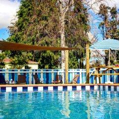 Отель Whanganui River Top 10 Holiday Park бассейн