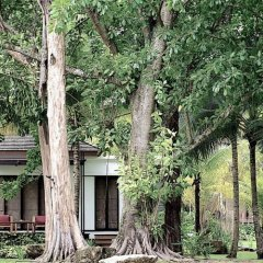 Отель The Mangrove Panwa Phuket Resort фото 10