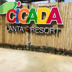 Отель Cicada Lanta Resort Таиланд, Ланта - отзывы, цены и фото номеров - забронировать отель Cicada Lanta Resort онлайн спортивное сооружение