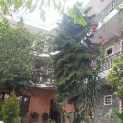 Отель The Third Eye Inn Непал, Покхара - отзывы, цены и фото номеров - забронировать отель The Third Eye Inn онлайн фото 9