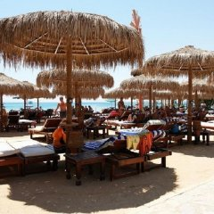 Elysees Dream Beach Hotel с домашними животными