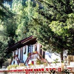 Отель Castle Park Албания, Берат - отзывы, цены и фото номеров - забронировать отель Castle Park онлайн помещение для мероприятий фото 2
