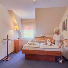 Отель Francis Чехия, Франтишкови-Лазне - отзывы, цены и фото номеров - забронировать отель Francis онлайн детские мероприятия фото 2