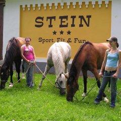 Отель Resort Stein Чехия, Хеб - отзывы, цены и фото номеров - забронировать отель Resort Stein онлайн с домашними животными