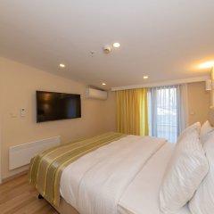 Feri Suites Турция, Стамбул - отзывы, цены и фото номеров - забронировать отель Feri Suites онлайн комната для гостей фото 4