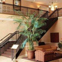 Отель Clarion Inn & Suites Clearwater фото 4