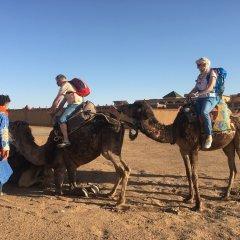 Отель Camp Under Stars - Adults Only Марокко, Мерзуга - отзывы, цены и фото номеров - забронировать отель Camp Under Stars - Adults Only онлайн приотельная территория фото 2