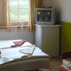 Отель Penzion Mašek Чехия, Хеб - отзывы, цены и фото номеров - забронировать отель Penzion Mašek онлайн комната для гостей фото 3