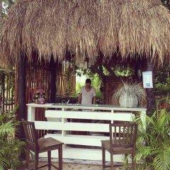 Отель Lory House Плая-дель-Кармен гостиничный бар