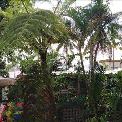 Отель Colonial Lodge Фиджи, Вити-Леву - отзывы, цены и фото номеров - забронировать отель Colonial Lodge онлайн фото 8
