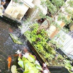 Отель Green Heaven Hoi An Resort & Spa Хойан фото 4
