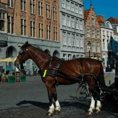 Отель Holidayhome Bruges @ Home фото 6