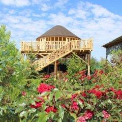 Отель Happy Nomads Yurt Camp Кыргызстан, Каракол - отзывы, цены и фото номеров - забронировать отель Happy Nomads Yurt Camp онлайн фото 27