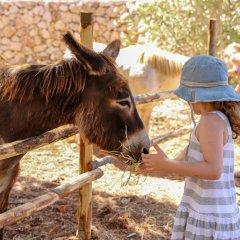Отель Cala DellArena с домашними животными