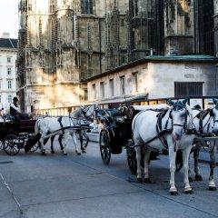 Отель Vienna Westside Apartments Австрия, Вена - отзывы, цены и фото номеров - забронировать отель Vienna Westside Apartments онлайн фото 4