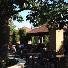 Отель Floriana Village Италия, Катандзаро - отзывы, цены и фото номеров - забронировать отель Floriana Village онлайн питание фото 2