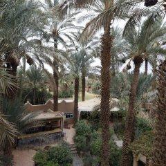 Отель Fibule du Draa - Kasbah D'Hôte Марокко, Загора - отзывы, цены и фото номеров - забронировать отель Fibule du Draa - Kasbah D'Hôte онлайн фото 4