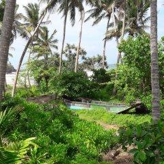Отель Leatherback Beach Villa фото 11