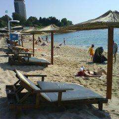 Отель Villa Eden Болгария, Генерал-Кантраджиево - отзывы, цены и фото номеров - забронировать отель Villa Eden онлайн пляж