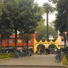 Отель Casa Aldama Мексика, Мехико - отзывы, цены и фото номеров - забронировать отель Casa Aldama онлайн фото 4