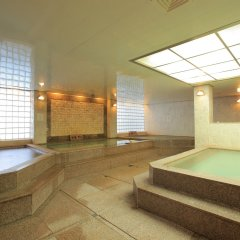 Отель Yongpyong Resort Dragon Valley Hotel Южная Корея, Пхёнчан - отзывы, цены и фото номеров - забронировать отель Yongpyong Resort Dragon Valley Hotel онлайн бассейн фото 2
