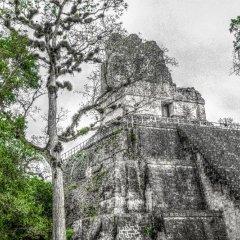Hotel Jaguar Inn Tikal фото 11