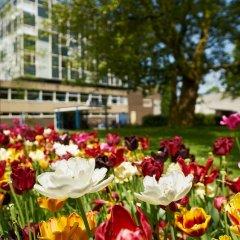 Отель Pension Homeland Амстердам фото 9