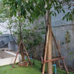Отель Avatar Residence Бангкок фото 5