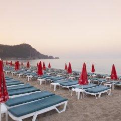 Отель Palmiye Beach Аланья приотельная территория фото 2