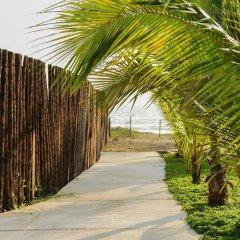 Отель El Secreto Мексика, Коакоюл - отзывы, цены и фото номеров - забронировать отель El Secreto онлайн пляж фото 2