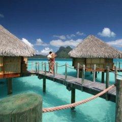 Отель Bora Bora Pearl Beach Resort and Spa Французская Полинезия, Бора-Бора - отзывы, цены и фото номеров - забронировать отель Bora Bora Pearl Beach Resort and Spa онлайн с домашними животными