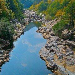 Отель Melanya Mountain Retreat Болгария, Ардино - отзывы, цены и фото номеров - забронировать отель Melanya Mountain Retreat онлайн фото 12
