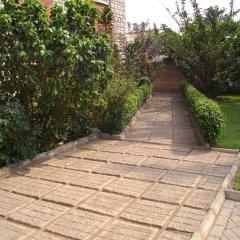 Апартаменты Calabash Green Executive Apartments Тема