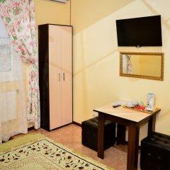 Hotel Alexandria-Sheremetyevo удобства в номере фото 2