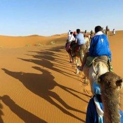 Отель Camp Under Stars - Adults Only Марокко, Мерзуга - отзывы, цены и фото номеров - забронировать отель Camp Under Stars - Adults Only онлайн спортивное сооружение