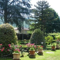 Отель Agriturismo Fattoria Di Gragnone Ареццо фото 11