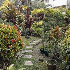 Отель Ridgewood Hotel Филиппины, Багуйо - отзывы, цены и фото номеров - забронировать отель Ridgewood Hotel онлайн