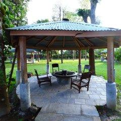 Отель Safari Adventure Lodge Непал, Саураха - отзывы, цены и фото номеров - забронировать отель Safari Adventure Lodge онлайн фото 2