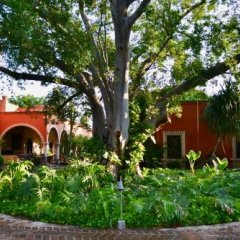 Отель Hacienda de Los Santos фото 16