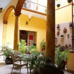 Casa Alebrijes Gay Hotel Гвадалахара фото 3