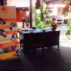 Отель Boutique Posada Las Iguanas Гондурас, Тела - отзывы, цены и фото номеров - забронировать отель Boutique Posada Las Iguanas онлайн с домашними животными