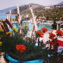Turkuaz Pansiyon Турция, Калкан - отзывы, цены и фото номеров - забронировать отель Turkuaz Pansiyon онлайн бассейн