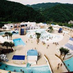 Отель Phoenix Pyeongchang Hotel Южная Корея, Пхёнчан - отзывы, цены и фото номеров - забронировать отель Phoenix Pyeongchang Hotel онлайн бассейн
