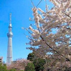 Отель First Cabin Atagoyama Япония, Токио - отзывы, цены и фото номеров - забронировать отель First Cabin Atagoyama онлайн пляж
