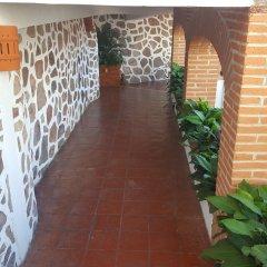Отель Playa Conchas Chinas Пуэрто-Вальярта фото 4