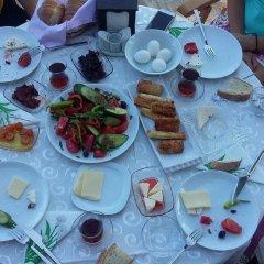 Geyikli Herrara Турция, Тевфикие - отзывы, цены и фото номеров - забронировать отель Geyikli Herrara онлайн фото 15
