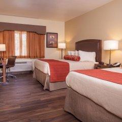 Отель Best Western Plus Inn Of Williams комната для гостей фото 2